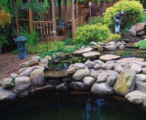 Koi pond malaysia koi pond is a great place to sit by for Garden pond design malaysia
